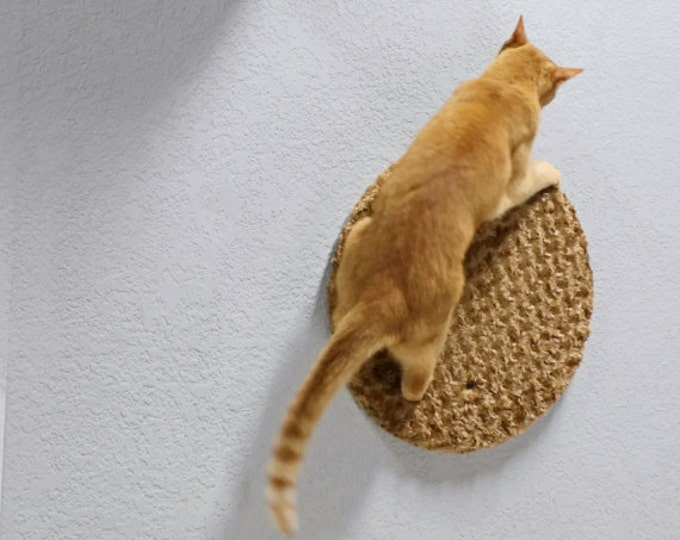 Wall Condo Panel - wall mounted cat furniture -by Urban Feline