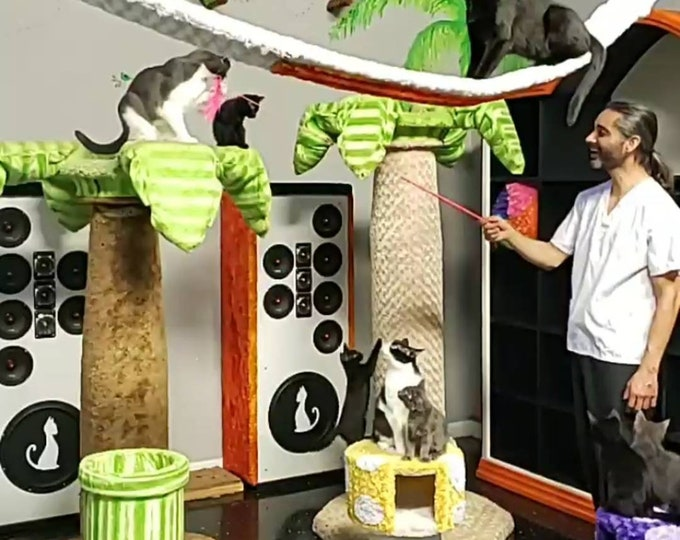 BirdWand - Interactive CatToys by Urban Feline