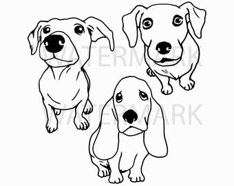 Three breeds of Cute Jack Russell Terrier and Basset Hound dog sitting - JPG PNG SVG - Hand Drawing Image - Digital files Instant Download