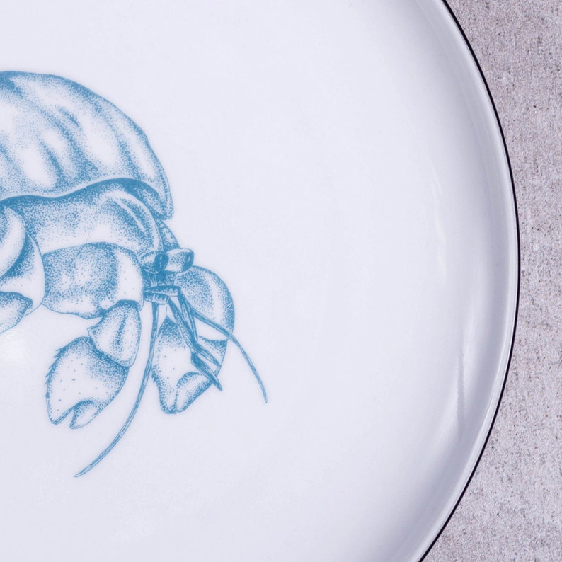 Small plate Nautical dishes Nautical pottery Dessert plate Illustrated plates, Porcelain plate Altered porcelain Hermit crab