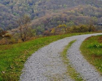 Nature photo - Pathway