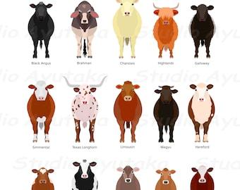 15 cattle breeds , svg, png, jpg, 16*20''
