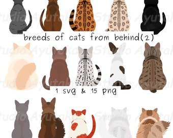 15 breeds of cats from behind(2), svg, png