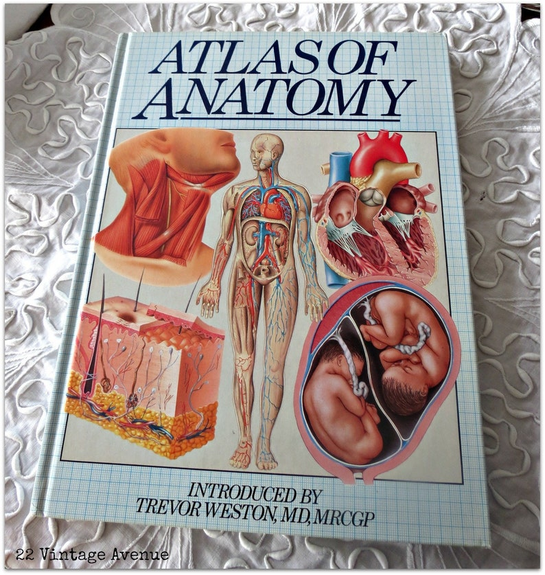 Atlas of Anatomy - Vintage Reference Book