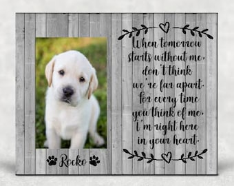 photograph about When Tomorrow Starts Without Me Printable titled Doggy cat Memorial think about body / Dog memorial body / Dog