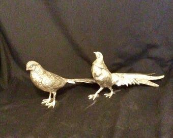 Silver tone pheasants