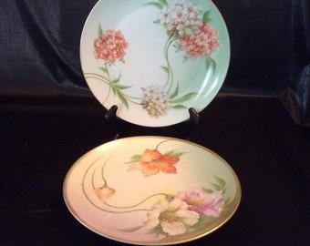 Zeh, Scherzer & Co Z. S. And Co Bavaria ca. 1900 fleur plaques - paire