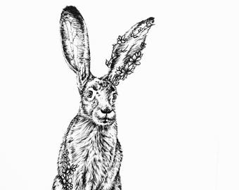 Magical Forest Collection - Jack Rabbit