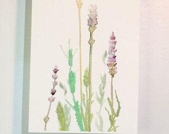 Purple Lavender, Lavender Sprigs, Art Print, Watercolor, Lavender Art, Floral Art Print, Botanical Watercolor, Kitchen Art, Wildflower Art