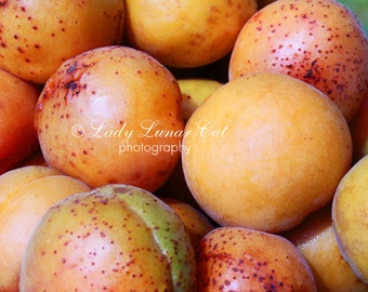Many Apricots Photo Orange photo Fruits photography Desktop Wallpapers Commercial use photo Digital Photography Stock photography Fine art