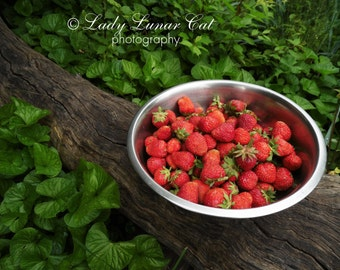 Strawberry photo Garden photo Red green photo Summer berry Red food photo Kitchen art decor Fruit Photo Still life art Colorful Fruit Decor