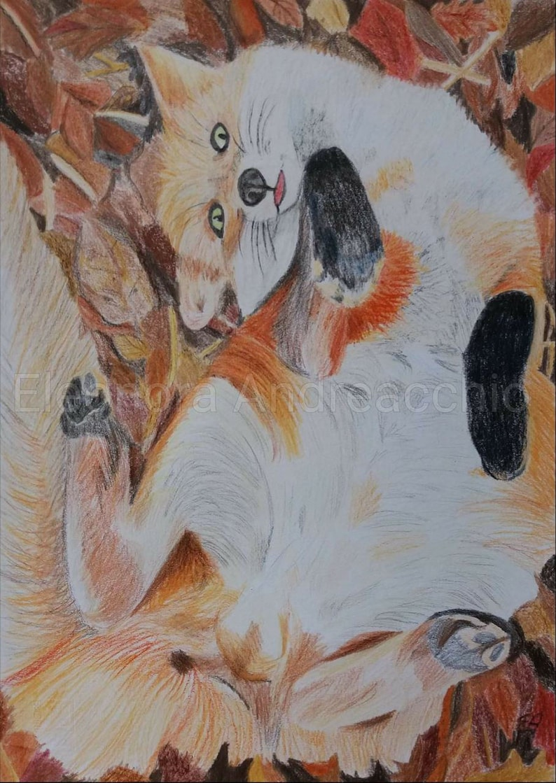Ritratto Di Volpe Rossa Disegno Con Matite Colorate Animale Etsy
