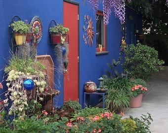 An award winning photo featuring Frida Kahlo inspired gardens