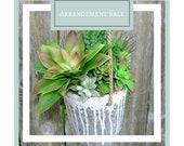 SALE Succulent Arrangement - Faux Succulent Hanging Cement Pot - Hanging Garden - Home Gifts - Succulent Planter - Hanging Planter, Boho