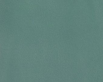 Coupon of Peacock green lambskin leather