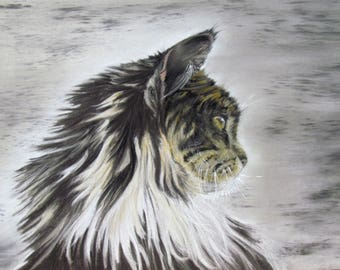 Cat Maine coon - pet portrait in pastel - animal Art