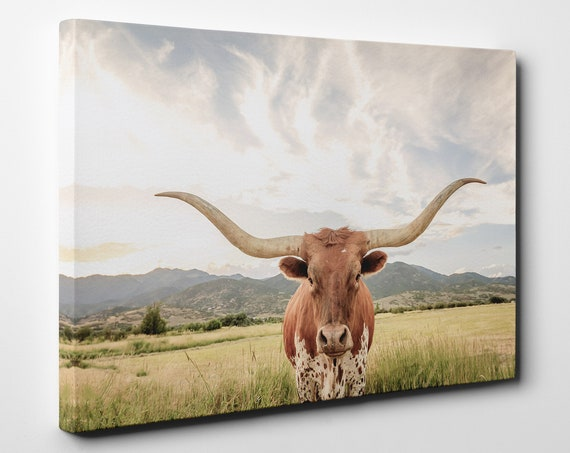 Texas longhorn steer framed canvas leather print/Large wall art/Longhorn cow print/Animals canvas print/Made in Italy/Framed canvas art