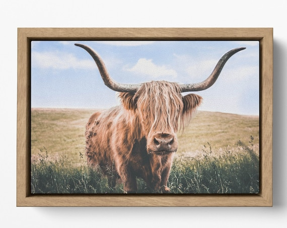 Close up brown highland cow with floating frame canvas leather print/Large wall art/Animal canvas/Made in Italy/Framed canvas