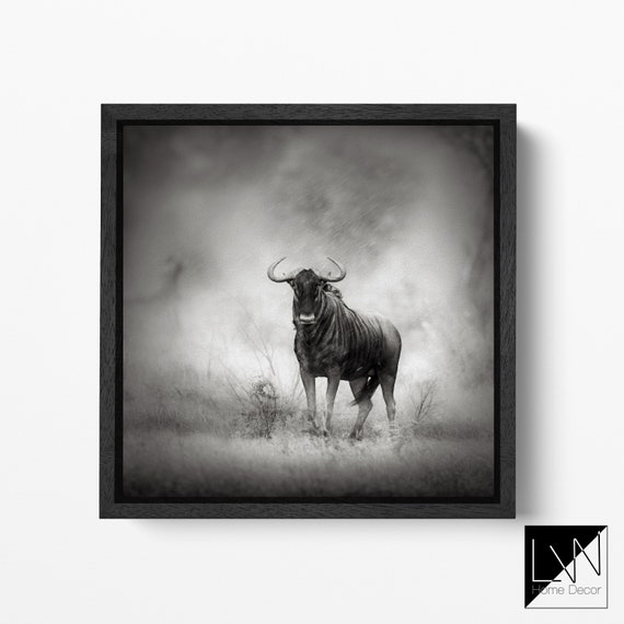 Blue Wildebeest in Rainstorm Leather Print/Wild Animals Print/Large Wall Art/Large Wall Decor/Home Décor/Made in Italy/Better than Canvas!