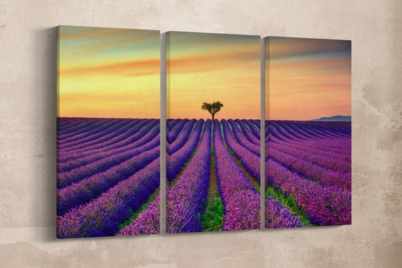 3 Panel Lavender in Provence, France Leather Print/Lavender Large Print/Large Wall Art/Multi Pieces Wall Art/Wall Decor/Better than Canvas!