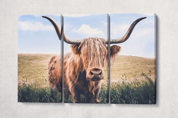 Close Up Brown Highland Cow Canvas Leather Print/Long-haired cattle print/Black and white print/Large wall art/Animal canvas/Made in Italy