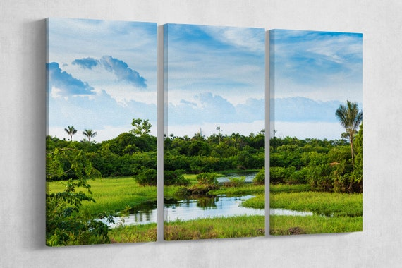 Wetland in Amazon framed canvas leather print/Large wall art/Large wall decor/Amazon forest print/Made in Italy/Better than canvas!