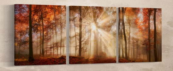 Rays of sunlight in a misty autumn forest framed canvas leather print/Large wall art/Autumn forest print/Made in Italy/Better than canvas!