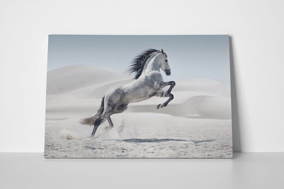 Wild white horse in dust leather print/Wall Art/Horse Print/Wall Decor/Animal Print/Multi Panel Print/Made in Italy/Better than Canvas!