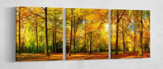 Autumn forest Leather Print/Extra Large Print/Multi Panel Print/Nature Print/Better than Canvas!