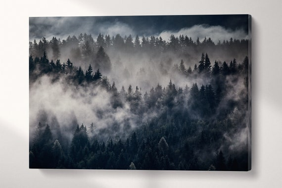 Misty Forest Framed Canvas Leather Print