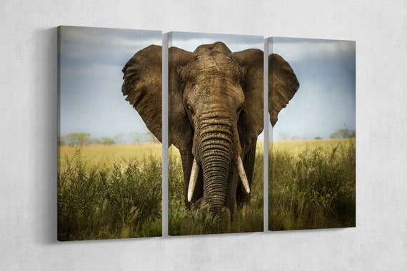 Elephant Leather Print/Wall Art/Extra Large Print/Multi Panels Print/Multi Pieces Print/Wild Animals Print/Better than Canvas!