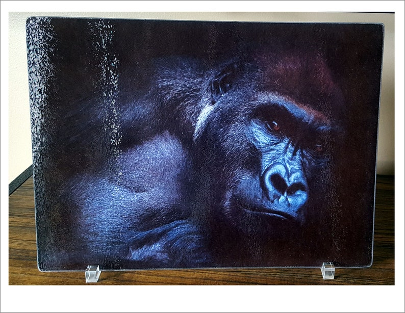 Wildlife Gorilla High Res Image, Glass Cutting Board, Kitchen/Home  Decoration, Gift for Animal Lovers