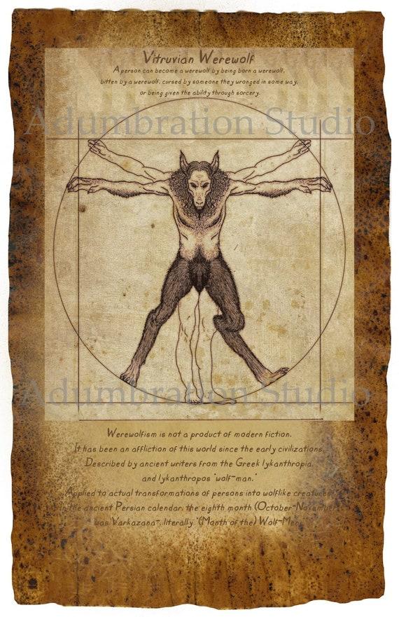 Vitruvian Werewolf Vignette Print, Wolfman, Werewolfism, Lycanthropy, on