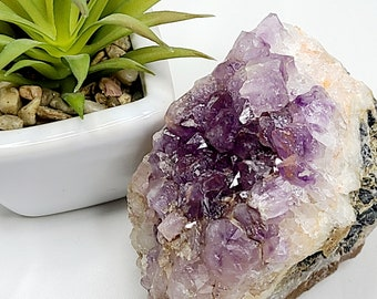 Amethyst Cluster with Galena