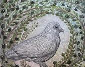 Peace Dove in Olive Tree ...