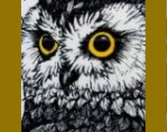 Original Lithograph Owl - signed by Artist- Limited Edition- in Solid Wood  Frame- Unique Gift - Excellent Condition, With Reduced Shipping
