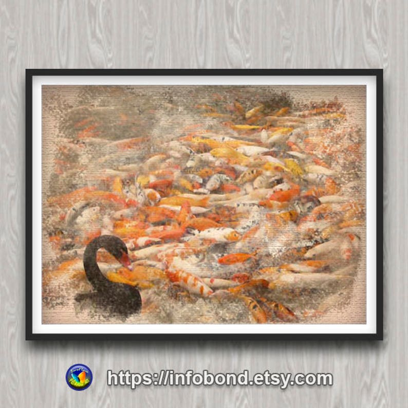 image about Goldfish Printable Coupons identified as COUPON CODES, PRINTABLE wall, Watercolor Print, the Black Swan, Goldfish Artwork, Black Swan hen, Unique Goldfish, Swan Concept, Chinese Goldfish