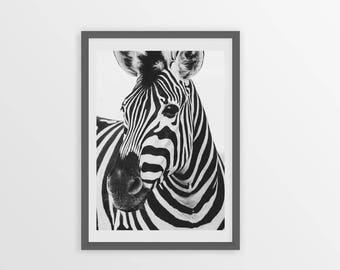 Zebra Print, Zebra Photography, Zebra Poster, Wall Art, Nursery Wall Decor, Printable Poster, Digital Print, Black and White photography