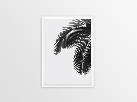 photograph relating to Palm Leaf Printable named Palm Leaf Print Black And White, Palm Leaf Printable, Palm Leaf, Tropical Leaf Print, Palm Print, Palm Leaf Artwork, Palm Leaves, Downloadable