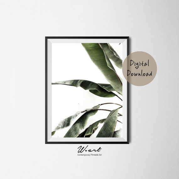 picture relating to Palm Leaf Printable named BANANA LEAF PRINT, Palm Leaf Printable, Palm Leaf, Tropical Leaf Print, Palm Print, Palm Leaf Artwork, Palm Leaves, Downloadable, Printable Artwork
