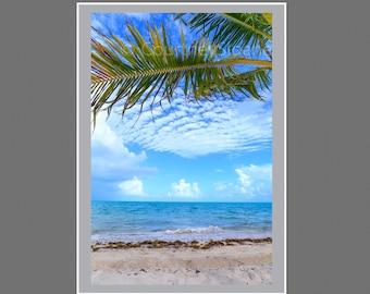 Printables, Max print 10x15, floating palm