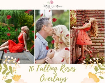10 Falling Roses Petals Overlays, Red Roses Photoshop PNG Overlays, Photo Overlays, Valentines Overlays, Valentine's day, Digital backdrop