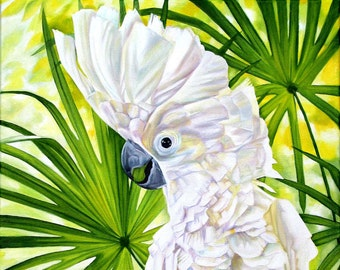 """Cockatoo print, 8x10 inch matted print from original oil painting """"Cockatoo"""" by Sheryl Sawchuk"""