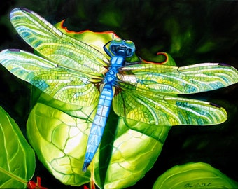 """Dragonfly print, 8x10 inch matted print from original oil painting """"Dragonfly"""" by Sheryl Sawchuk"""