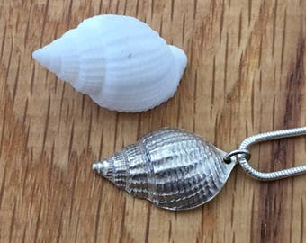 Silver Shell necklace, Silver seashell necklace, Fine silver, Silver, Seashell, Shell, necklace, Gift for her,  Beach lover gift, pendant
