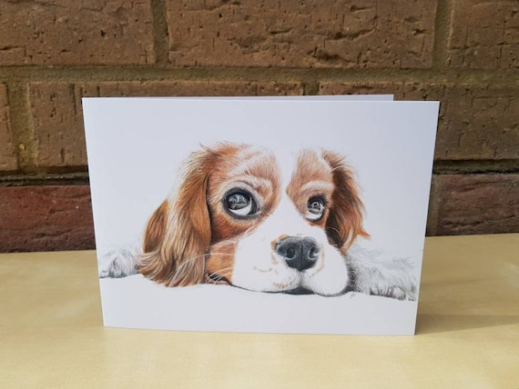 LEFT BLANK FOR YOUR MESSAGE ref:4 CAVALIER KING CHARLES SPANIEL CARD