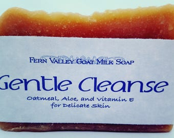 Fern Valley Soap - Gentle Cleanse