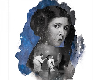 Star Wars Princess Leia Panel Featuring Princess Leia and R2D2