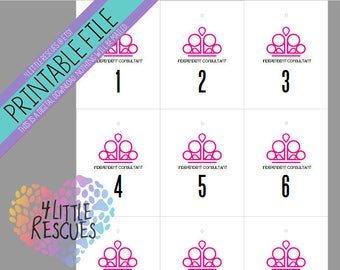 Printable: Paparazzi Forward AND Reverse Mirror Image Pink Crown Hanger Tags | Live Facebook Sales | Numbers 1-1000 | PDF | Consultants DIY
