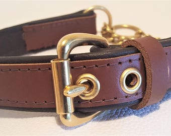 Tan on Brown leather Martingale dog collar with solid brass hardware & free embossing